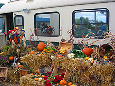 Autumn display, Gatineau station. (Photo - Matthew Farfan)